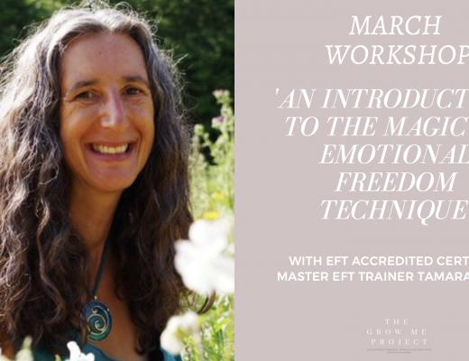 EFT Workshop with Tamara Donn